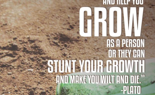 People are Like Dirt Plato Quote