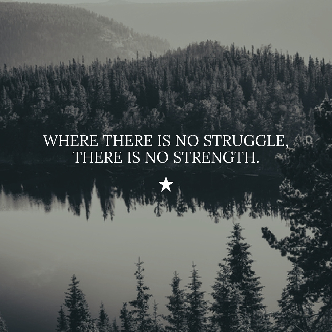 struggle and strength quote