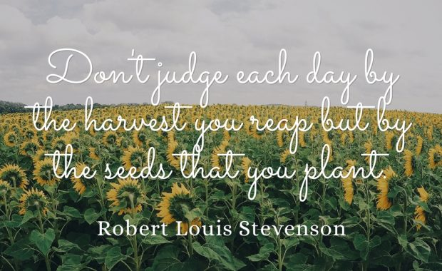 Seeds vs Harvest Quote